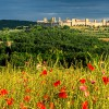 Culinary Discovery Tours Wine & Food weekly journey traveling through Tuscany