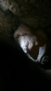un volto etrusco